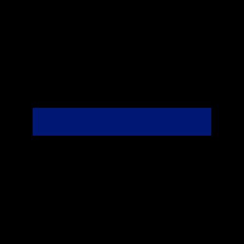Logo for Validus RE.